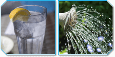 Drinking Water and Garden Water